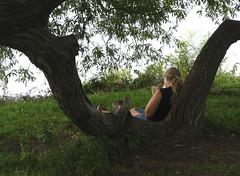 Some Room of Her Own (AntyDiluvian) Tags: boston backbay charlesriver esplanade charlesriveresplanade newburystreet september2004 shade lapping read girl girlreading breeze book tree