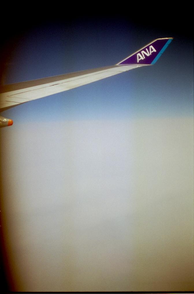 wing 1