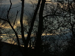 Sunset In Lexington VI (mightyquinninwky) Tags: fontaineroad lexingtonky fayettecountyky kentucky clouds sunset trees december winter sky