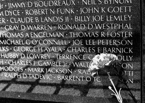Vietnam War Memorial: Names