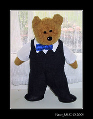 Fuzzy ... dressed up on my wedding day (Paco_MUC) Tags: bear blue topv111 azul oso teddy fuzzy bleu blau beaniebabies fuzz br ours peluche beaniebaby brchen osito 333views pacomuc zerofaves