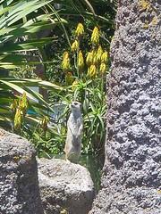 Wellington Zoo (TELPortfolio) Tags: newzealand animals zoo wellington newtown wellingtonzoo zoologicalgardens 10millionphotos jalalspagesanimalkingdom