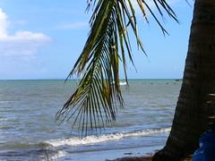 Fajardo beach (dshield) Tags: puertorico fajardo
