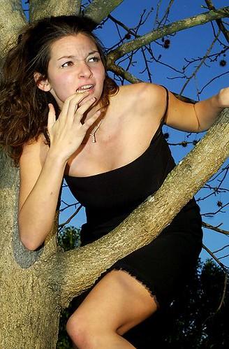 damsel in a tree