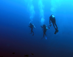 3dvrs1649npw (gerb) Tags: blue topf25 beautiful topv111 1025fav 510fav wow cool topv555 topv333 underwater searchthebest topv1111 topv999 bubbles scuba fv5 loveit galapagos pi blogged topv777 diver d100 topv3333 aquatica 1835mmf3545d 1000v40f pfo 3waychallenge 3wc tvx abigfave 3w5 superaplus aplusphoto top20blue ishflickr photofaceoffwinner pfogold