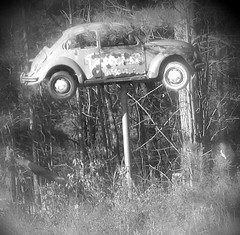 (daydream scream) Tags: old bw abandoned topv111 vw volkswagen interestingness rust beetle pole nostalgia why douglasville caronastick