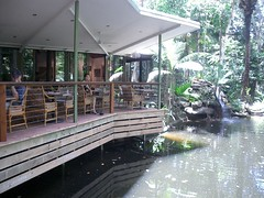 Daintree Eco Lodge - Restaurant