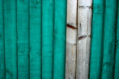 the odd couple (Craig Sefton) Tags: fences wood colourful colorful minimalist lines linear loveit