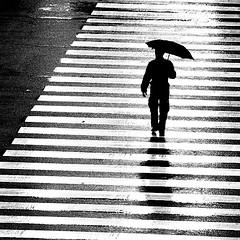 Rainman (razorbern) Tags: bw argentina umbrella buenosaires interestingness1 bernie crosswalk topf400 razorbern tccomp056 artlibre bwart7days bwart8days