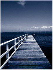 take a dip... (macca) Tags: pontoon water railing platform duotone australia