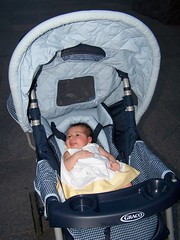 100_1635 (vicbel) Tags: 2005summer picnic hainspoint abuelos gabriela dc washington fdr