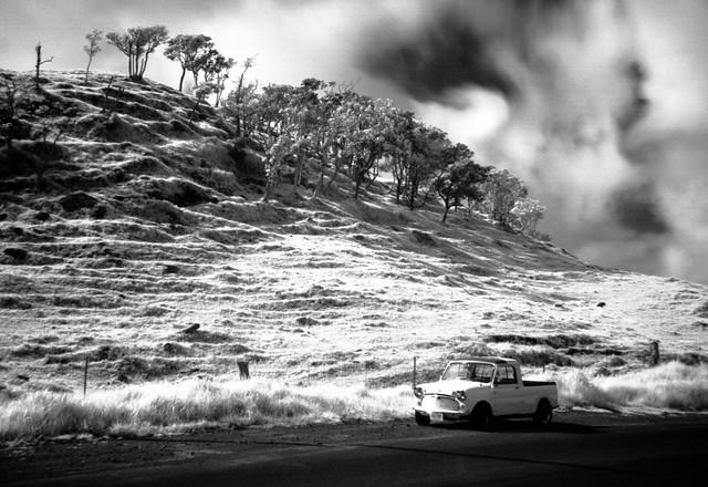 minipup infrared oldmamalahoahighway hawaii 1974 austin mini pickup truck bonafide fearless minipuptotherescue morris