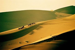 Silk Road illusion (nicointhebus (nicolas monnot)) Tags: 2005 china travel vacation travelling topv111 landscape sand asia dune camel xinjiang silkroad gobi gansu dunhuang nicointhebus fivestarsgallery