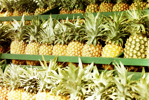 Pineapple Fruits for Weight Loss