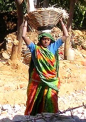 Another load (Eileen Delhi) Tags: street india work construction women asia delhi driveby carry roadwork headload indianportrait realindia