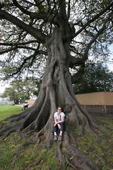 Sydney Observatory (nospuds) Tags: tree sydney bianca