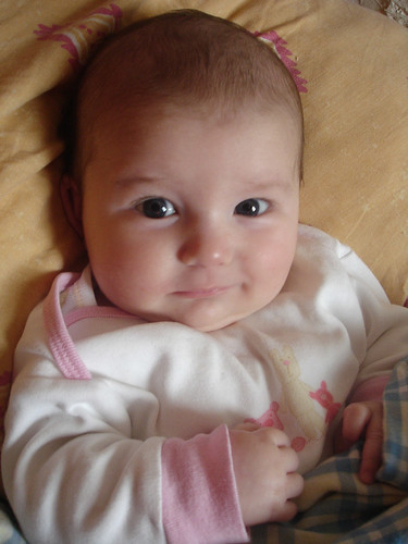 funny pics of babies. Album Funny Baby Picture