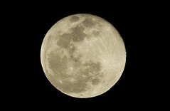 Moon over Austin, Texas (Heather Leah Kennedy) Tags: moon 350d fullmoon 300mm astrophotography rebelxt canondslr