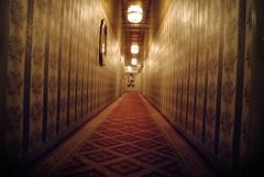 Shining (Davide Steno) Tags: park new york usa ny newyork hotel nikon centralpark central lane helmsley davide shining steno helmsleyparklane davidesteno