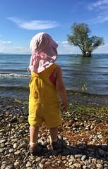 Fernweh (tom_focus) Tags: baby lake water girl island wasser wanderlust insel bodensee constance lakeconstance fernweh gaisau