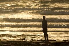 DSC2932-2 (gregorycarr9) Tags: beach sunrise capecanaveral harbordrive