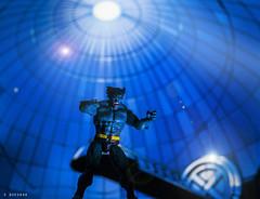 "Beast (Dr. Henry Philip ""Hank"" McCoy) (squesada70) Tags: blue comics toy actionfigure geek xmen beast mutant hank marvel cerebro mccoy geeko toyphotography hankmccoy actionfigurefotography"