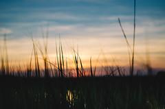 Sun Set (anthonyharle.com) Tags: sunset sky sun sc set 50mm nikon southcarolina nikkor f18 18 afs 50mmf18 sullivansisland vsco d7000 nikond7000 afsnikkor50mmf18g vscofilm vsco06