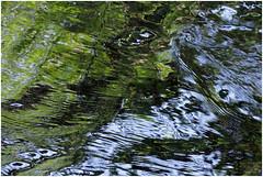 göhl 26 (beauty of all things) Tags: water creek wasser bach geul göhl lagueule