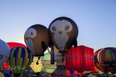 Bristol Balloon Fiesta (yve1964) Tags: bristol penguin flying ky balloon hotairballoon ricoh ballooning envelopes bristolballoonfiesta
