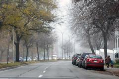 Around the bend (caribb) Tags: montreal montréal quebec québec canada urban city 2016 street streets eastend mercierhochelaga mercier fog langelier outdoor road bend cars weather
