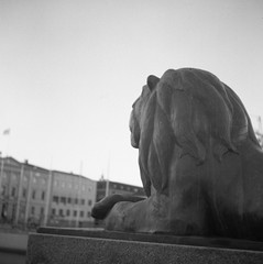 Lejontrappan (rotabaga) Tags: sverige sweden svartvitt göteborg gothenburg lomo lomography lubitel166 ilford twinlens blackandwhite bw bwfp diy mediumformat mellanformat 120 6x6