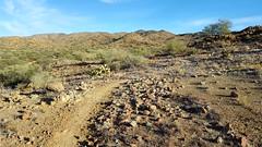 20161210_090408 (Ryan/PHX) Tags: trailrunning bct blackcanyontrail arizona desert outdoors ultrarunning aravaiparunning