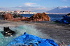 _Napoli (marziabertelli) Tags: naples napoli vesuvio neve gelo innevato ghiaccio coast costa gatto cat gattino mare sea reti pescatori azzurro sky cielo lamiacittà città