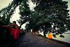 கொல்கத்தா (Kals Pics) Tags: kolkata westbengal india pov perspective man woman red yellow life people cwc chennaiweekendclickers roi rootsofindia streetlife lightandlife lightandshadow trees calcutta cityofjoy ancientcity historiccity incredibleindia hooghly river ganges hoogly shore banks ghats ganga kalspics sovabazar shovabazar shobhabazar