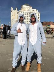 Polar Bear Plunge - January 1, 2017
