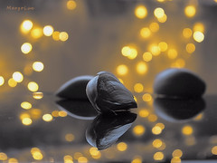Reflections ... (MargoLuc) Tags: garlic reflections table golden bokeh stilllife selective colours white grey tones lights indoor