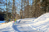 Winter Forest Walk, Nuuksio, National Park, Espoo, Finland (Steve Weaver) Tags: finland suomi visitfinland winter snow espoo helsinki south southern blue sky cold ice freeze freezing white family activities nature reserve national park nuuksio kirkkonummi