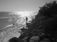 Bahia Honda Shore (David's.photos) Tags: ocean beach bahiahonda florida keys