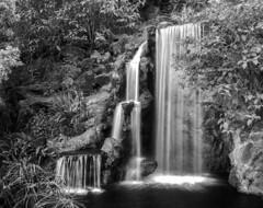 Cliché Waterfall Shot (Blurmageddon) Tags: 4x5 largeformat film analogphotography blackandwhite graflex speedgraphic ektar127mm47 kodak trix320 epson2450