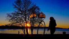 English Bay sunset, Vancouver (Steve Burgess1) Tags: vancouver englishbay sunset water ocean evening sculpture jewels