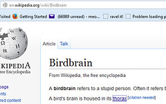 Yet another reason not to use Wikipedia (meowhous the iconoclast) Tags: birdbrain