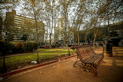 Praça Montevidéu (Lienio Medeiros) Tags: travel square uruguay chair banco sit praça traveling montevidéu uruguai