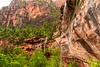 20150523 Emerald Pools (Zion)-2 (Tony Castle) Tags: park nature forest utah us waterfall unitedstates hurricane national pools zion znp emeral