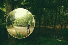 Woodland Mirror (Tamas Katai) Tags: road wood summer green nature woodland mirror photographer angus burn edzell