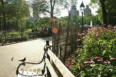 washington square (Idaliska) Tags: nyc newyork manhattan westvillage washingtonsquare greenwichvillage