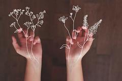 spring is born inside our veins (veins) Tags: flowers art digital hands drawing explore veins doodles delicate florals simple
