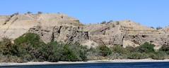 IMG_0230.jpg (DrPKHouse) Tags: arizona unitedstates loco bullhead chemehuevi mohavevalley