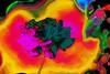 Verdirosa (seguicollar) Tags: flower flor rosa pink verde green amarillo virginiaseguí imagencreativa photomanipulación artedigital arte art artecreativo