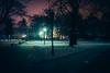wich way? (Rry_) Tags: night warsaw poland parksaski walk sony a7ii 55mm sonnar winter