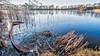 U-Boot - Submarine (ralfkai41) Tags: ruderboot gesunken see reflection outdoor lake natur rowboat hdr landscape teich nature sunken spiegelung water boat schwepnitz landschaft wasser boot